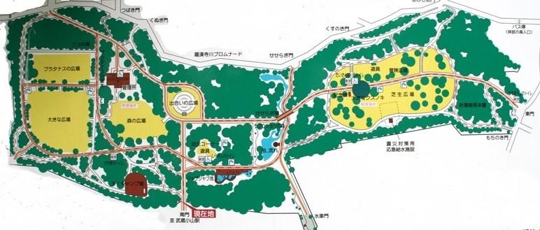 林試の森公園マップ