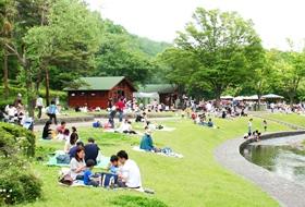 ピクニックが楽しめる公園