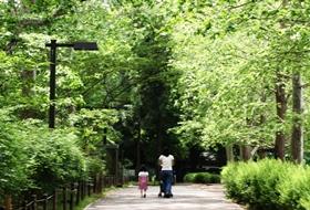 お散歩公園