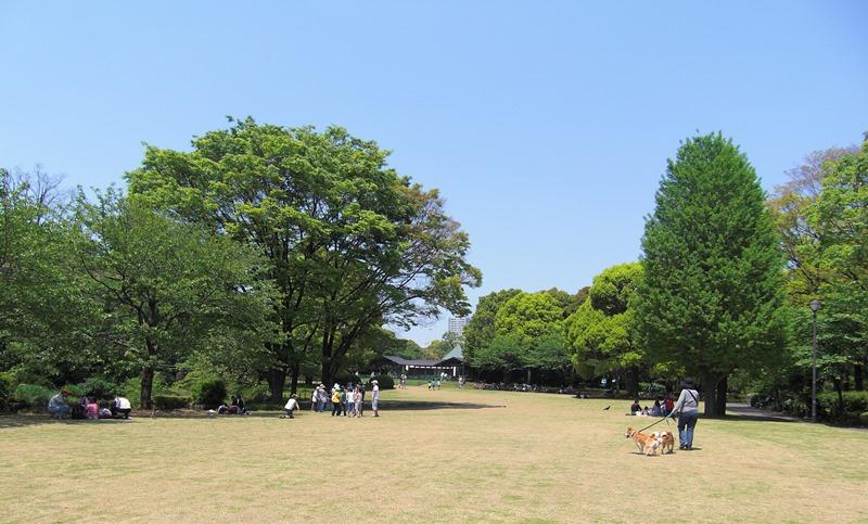 北の丸公園