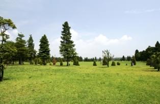 辰巳の森海浜公園