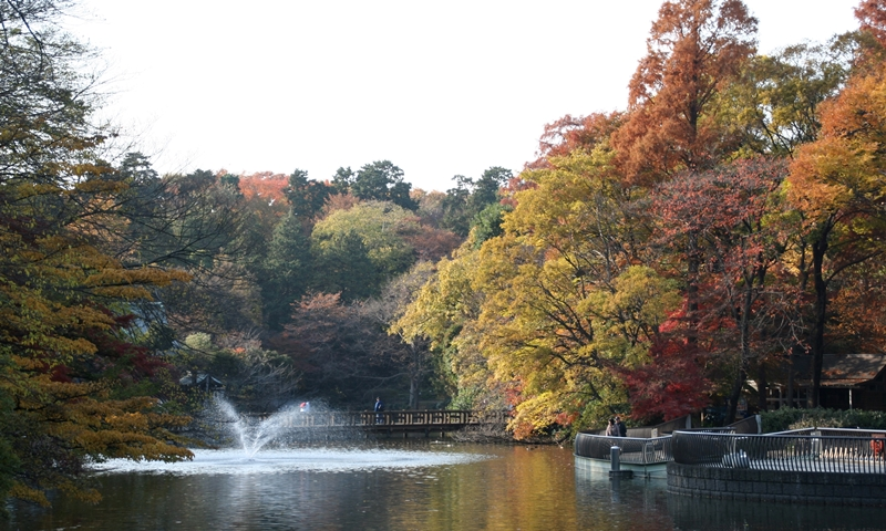 井の頭恩賜公園の紅葉