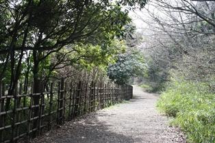 東京湾野鳥公園