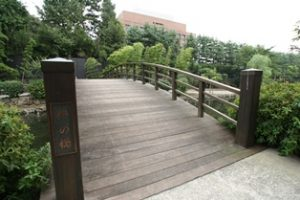 木場親水公園