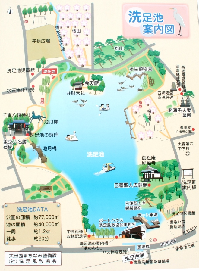 洗足池公園マップ