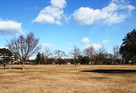 武蔵国分寺公園