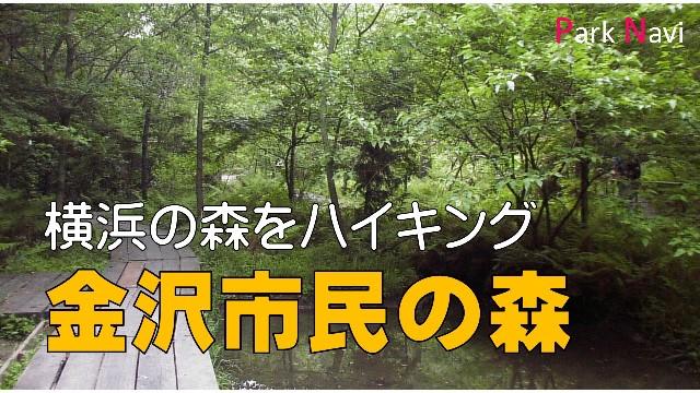 金沢市民の森