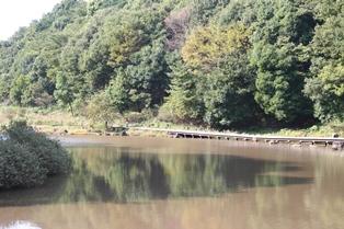 四季の森公園