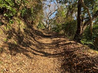 高麗山公園ハイキングコース