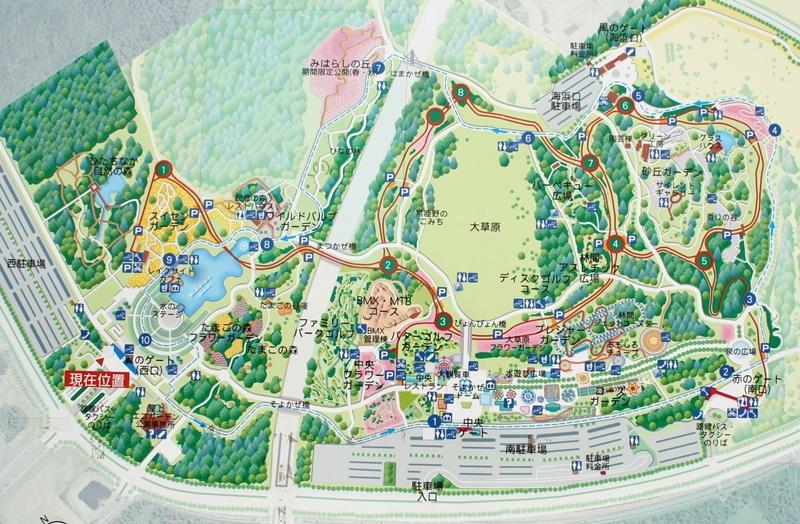 ひたち海浜公園のマップ