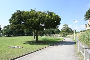 本牧市民公園