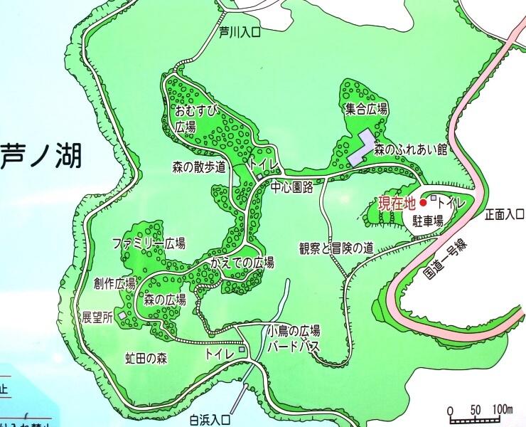 箱根やすらぎの森マップ