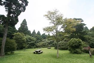 箱根やすらぎの森