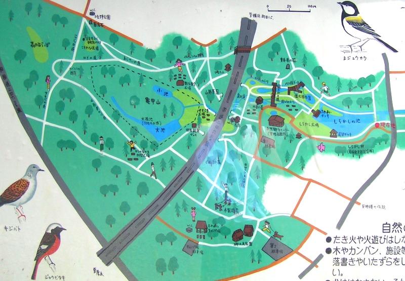 泉の森マップ