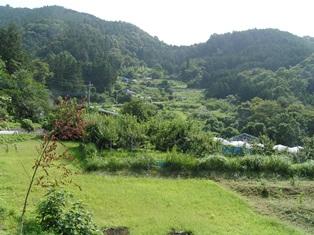 芦ヶ久保果樹園