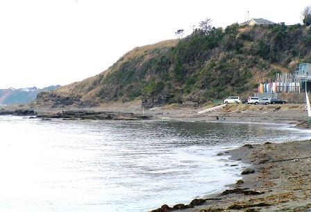 三戸浜海岸