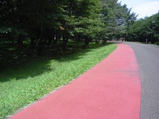 和光樹林公園