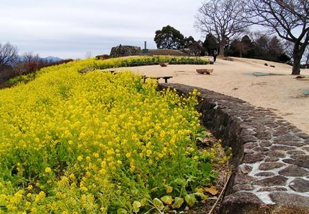 吾妻山公園