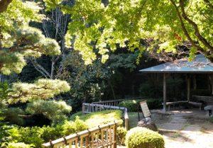 池田山公園
