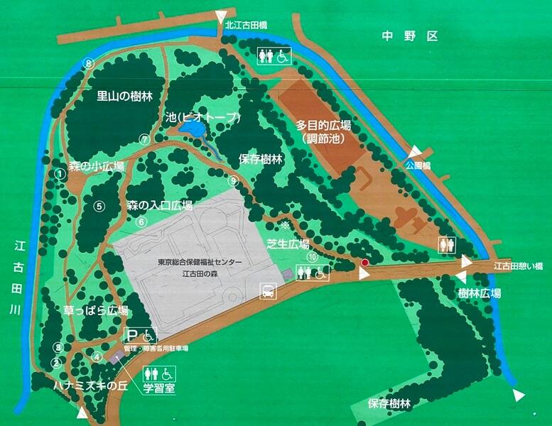 江古田の森公園マップ