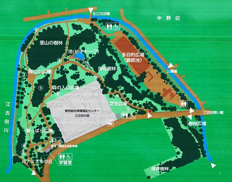 江古田の森公園の地図