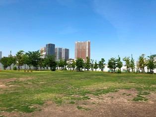 芝浦中央公園