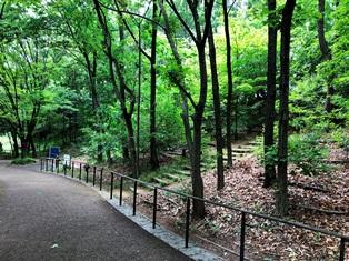 赤羽自然観察公園