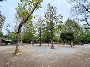 新井薬師公園