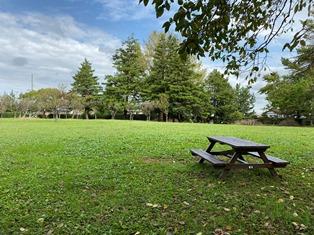 青葉の森公園