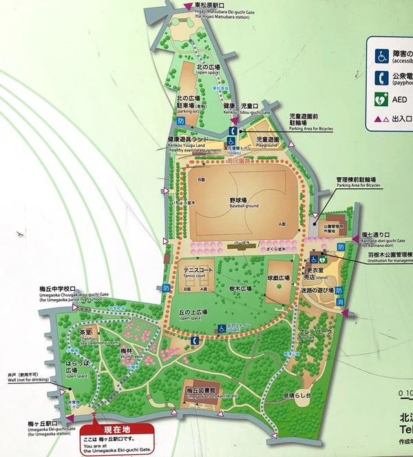 羽根木公園マップ