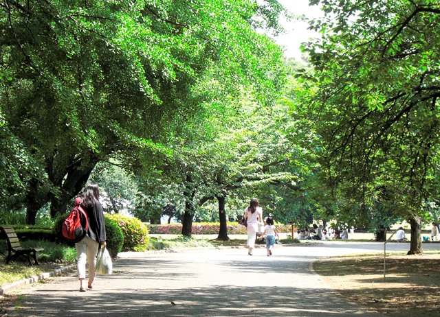 公園のイメージ