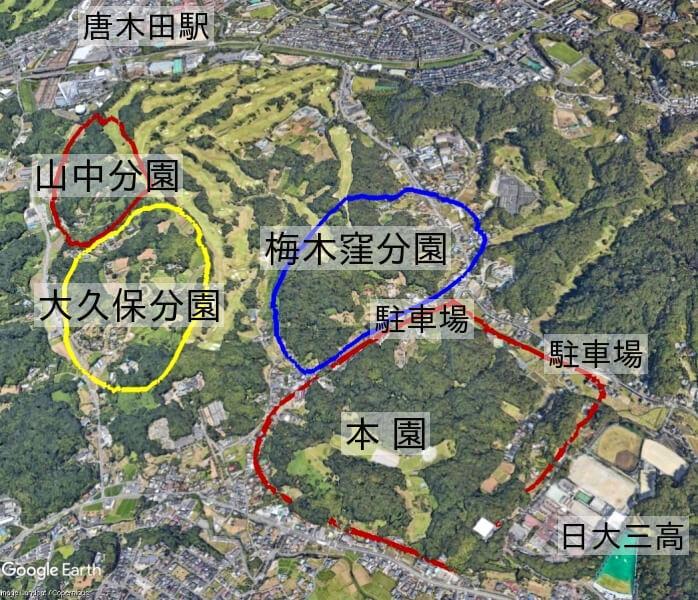 小山田緑地全景